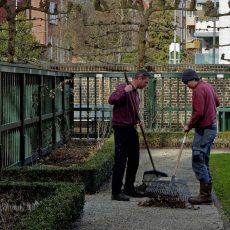 Nieuw thema: de omsloten tuin (hortus conclusus)