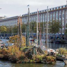 Drijvende tuinen van Robert Jasper Grootveld, Amsterdam: aanvulling (1)