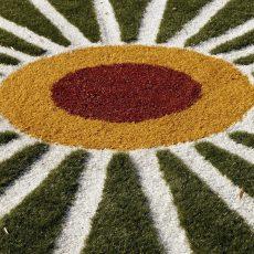 Flying Grass Carpet, Rotterdam: aanvulling (1)